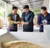 충남 2019년산 쌀 생산량, '72만톤 내외' 전망