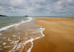 태안군, 거대한 모래섬 '장안사퇴'의 비경 알린다!